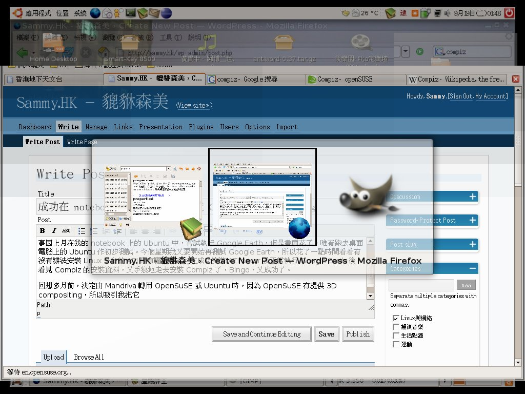 ubuntu-compiz-1st.jpg