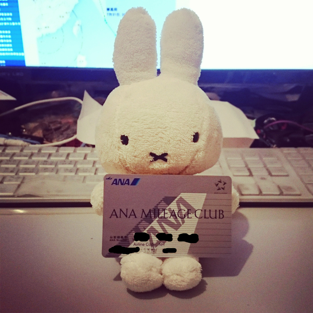 anaedy-miffy